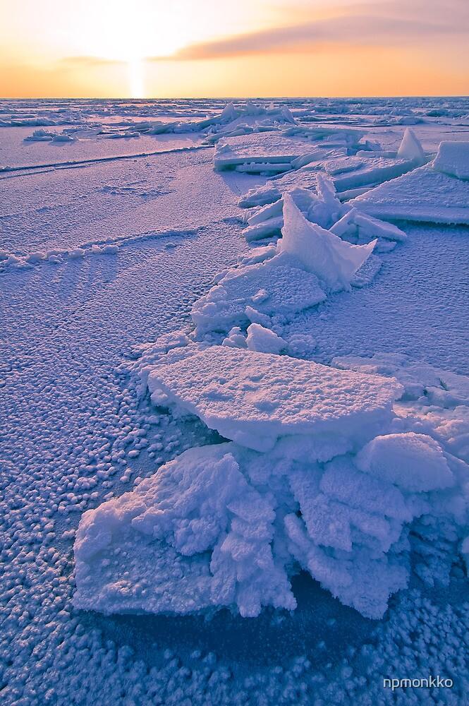 Ice Flakes by Niko Mönkkönen