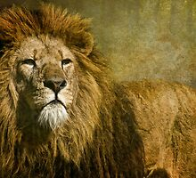 The King by Tarrby