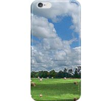 Cloudy Hay Field iPhone Case/Skin
