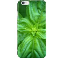 Basil - iPhone Case iPhone Case/Skin