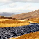 Clunie Water by Paul  Green