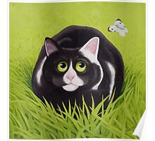 Cat and Cabbage White Poster