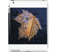 Soaked Leaf iPad Case/Skin