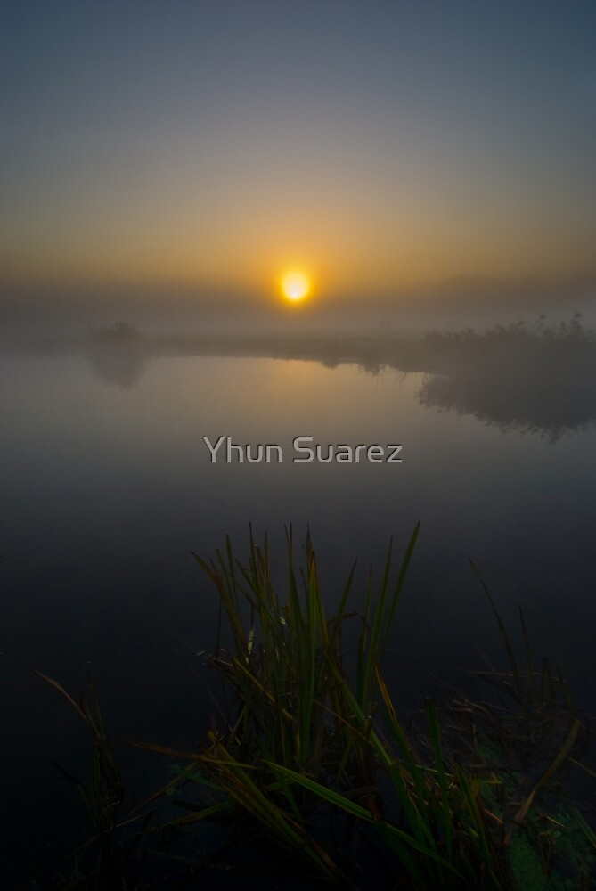 Misty Dawn 5.0 by Yhun Suarez