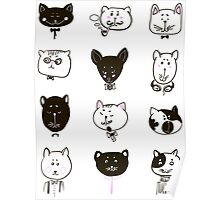 Set of cats heads Poster