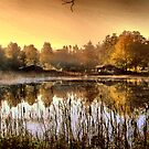 Morning light by The Lake by ienemien