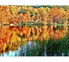 Beavers Bend Fall View 2 Photographic Print