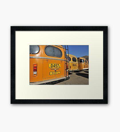 Yellow Buses Framed Print