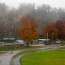 Autumn Rain at the Park by Virginia Shutters