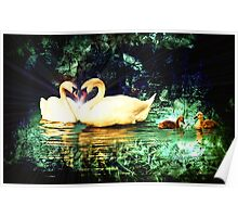 Swan Heart Abstract Poster