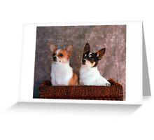 Stella and Eddie Greeting Card