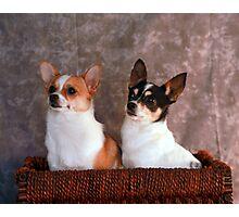 Stella and Eddie Photographic Print