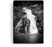 Falls on cedar creek Canvas Print