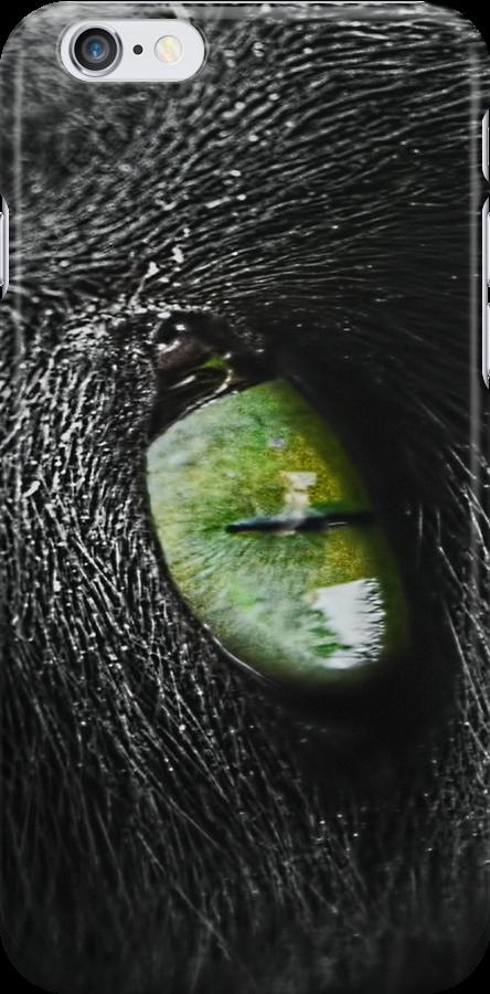 Cats eye by timmburgess