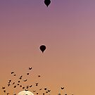 Albuquerque International Balloon Fiesta, 2011.2 by Alex Preiss
