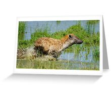 """""""hyena in a hurry"""" Greeting Card"""