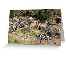 """zebra crossing"" Greeting Card"
