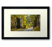 Fall River Road, Rocky Mountain National Park Framed Print