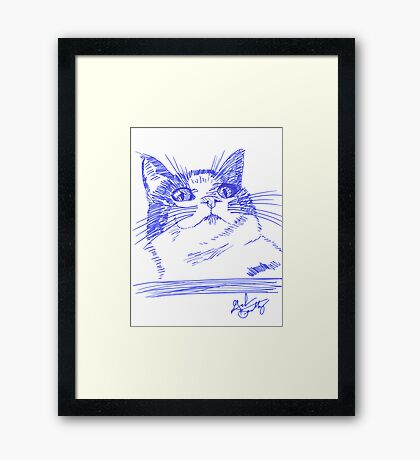 Chester the Cat Framed Print