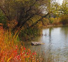 October Day on Sinton Pond (3) by dfrahm
