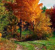 Autumn in NH by blenny80
