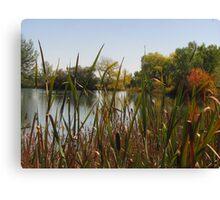 October Day On Sinton Pond (6) Canvas Print