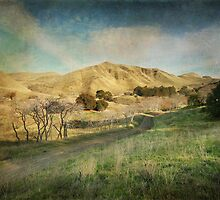 We'll Walk These Hills Together by Laurie Search