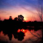 Sunrises and Sunsets 2012 © by Dawn M. Becker