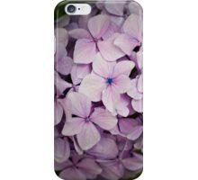 Hydrangea  iPhone Case/Skin
