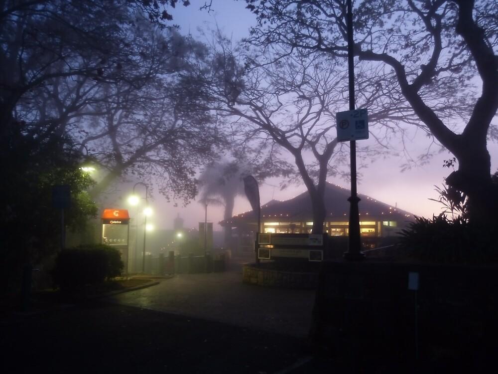 A foggy day, in Brisbane town by PhotosByG