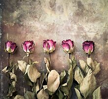 Five dried roses by Maria Heyens