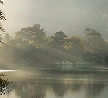 Sunrays on Rydal Water . by Irene  Burdell