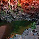 Halfway Down - Joffre Falls - Karijini NP by Matt  Streatfeild