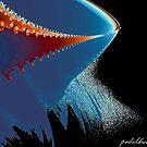 """Whale Patrol"" by Patrice Baldwin"