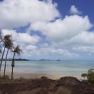 Endeavour Strait from the tip of Australia, Cape York by Chris Cohen