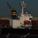 Freight port in Klaipėda by Antanas