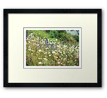 Flower meadow Framed Print