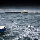 Ynysoedd y Moeirhoniaid (The Skerries) Leaving by Raymond Kerr