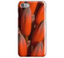 Red Cactus iPhone Case/Skin
