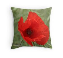 Single Red Poppy Throw Pillow
