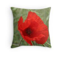 Single Red Poppy Throw Pillow