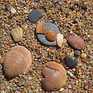 Stones, pebbles and seashells by MONIGABI