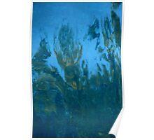 Reflecting Pool Deity 2 Poster