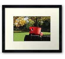 cleaning nature  Framed Print