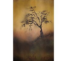 Wait by the tree for me Photographic Print