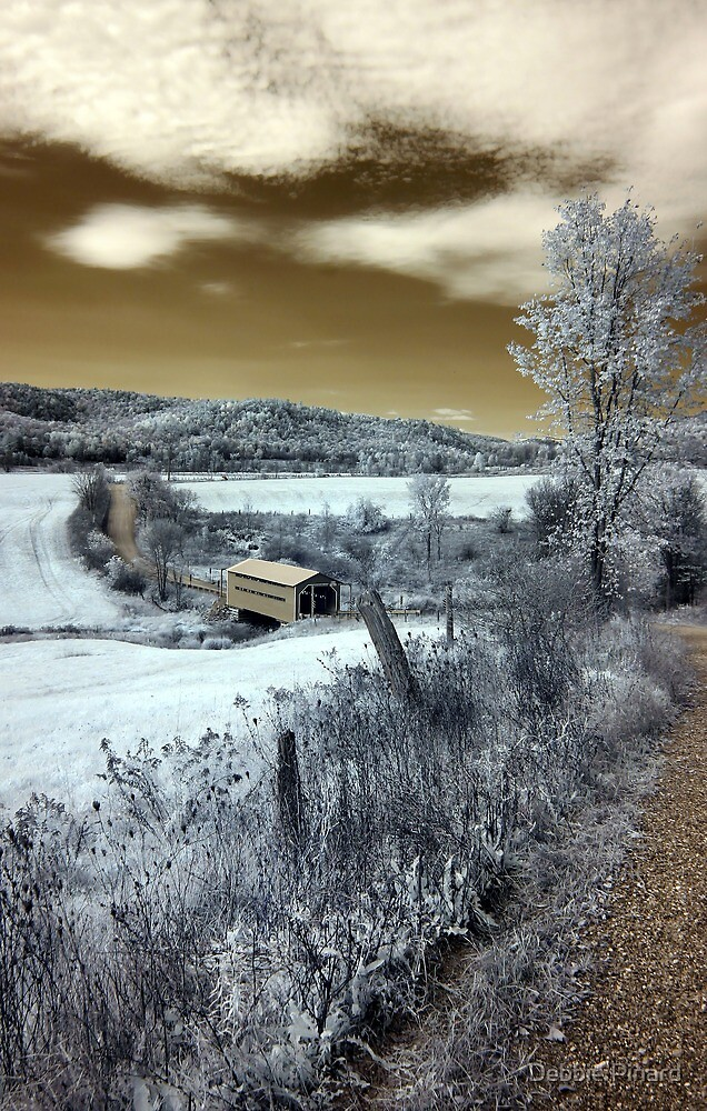 The Covered Bridge 3 Infrared - Gatineau Park Quebec by Debbie Pinard