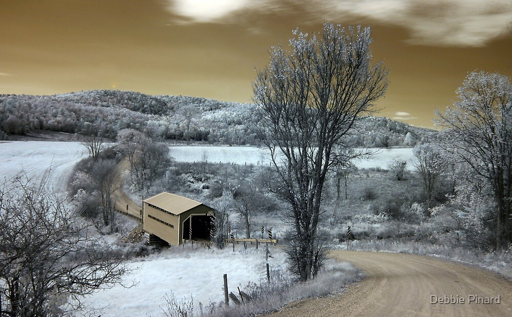The Covered Bridge 4 Infrared - Gatineau Park Quebec by Debbie Pinard
