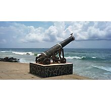 Crow on a Cannon Photographic Print