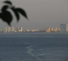 Marina and Zona Hotelera of Puerto Vallarta in the morning sun by PtoVallartaMex