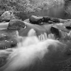 Stream by weecoughimages